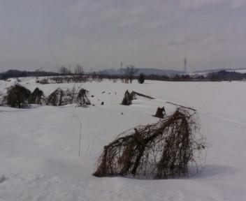 ★さよなら雪景色